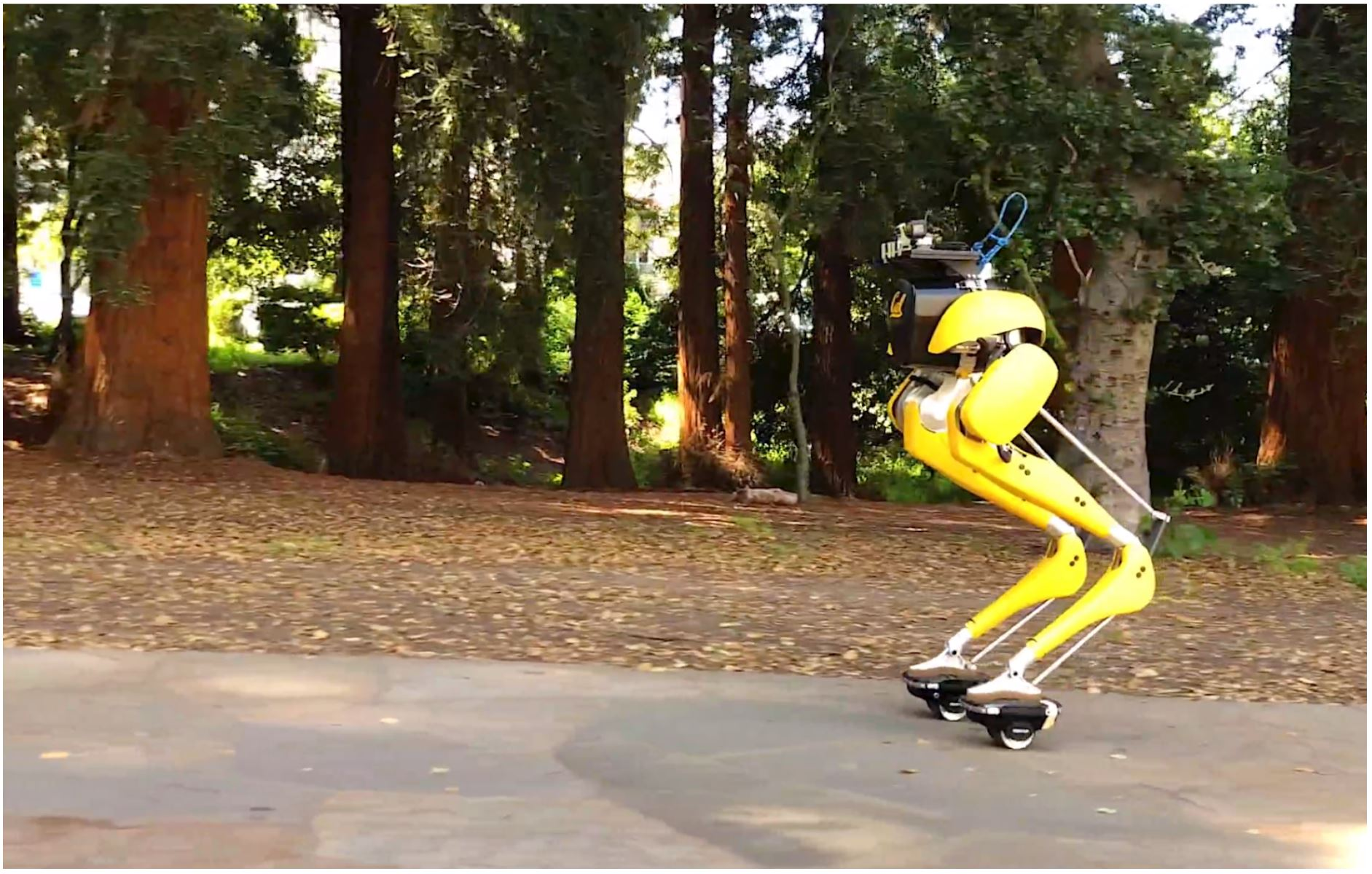 Feedback Control for Autonomous Riding of Hovershoes by a Cassie Bipedal Robot